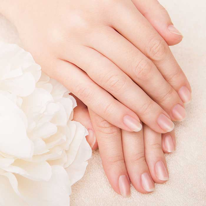 Manicured Nails   The Dermatology Institute of America Logo Dermatologist Formulated Skincare Products and Beauty Product Evaluations